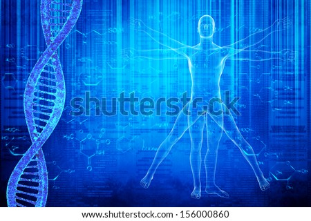 DNA molecules and virtuvian man - stock photo
