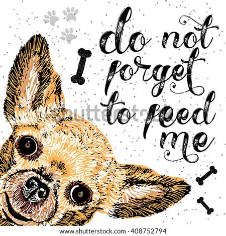 Do not forget to feed me, sign with cute smiling dog. illustration, lettering on texture background. Inscriptions for pet lovers. Painted lettering. Typographic calligraphic. Demanding phrase. - stock photo