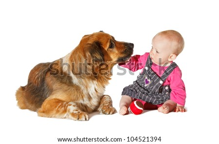 Do not kiss me... 9 Months old Baby and Dog playing on white background - stock photo
