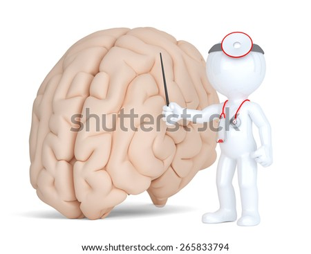 Doctor pointingat human brain. Medical illustration. Isolated. Contains clippin path. - stock photo
