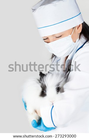 doctor with a decorative white rabbit in hands - stock photo