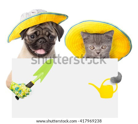 dog and cat with a garden tool peek out from behind a banner - stock photo
