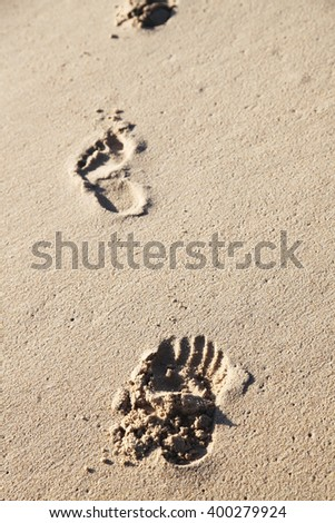 Dog and human foot prints along a sandy beach, queensland, australia - stock photo