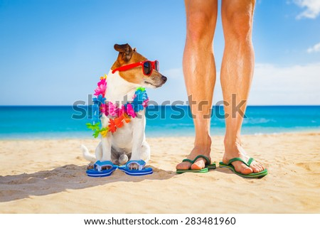 dog and owner sitting close together at the beach on summer vacation holidays, close to the ocean shore, while looking to the side - stock photo