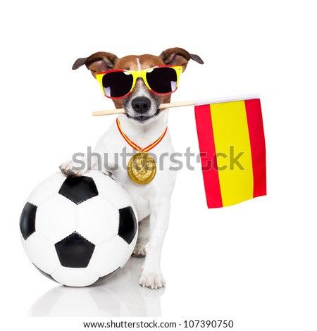 dog as soccer with medal and  flag - stock photo