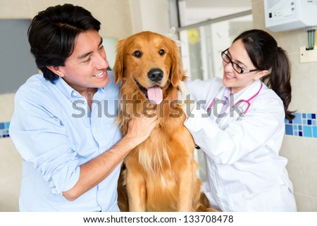 Dog at the vet with his owner and the doctor - stock photo