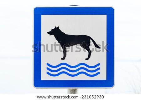 Dog beach - stock photo