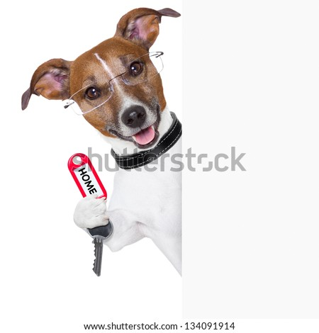 dog behind an empty placard with a home  key