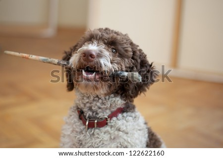 dog biting paint brush - stock photo