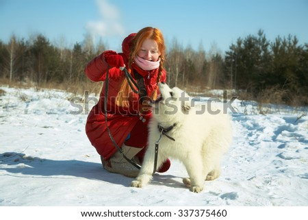 Dog breed Samoyed husky with girl outdoors. puppy dog for a walk with his owner.  - stock photo