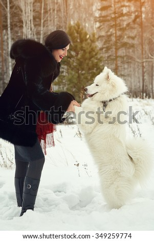 Dog breed Samoyed husky with woman outdoors. dog for a walk with his owner - stock photo