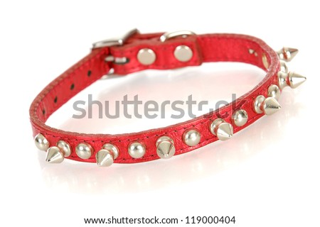 dog collar - red studded dog collar isolated on white background - stock photo