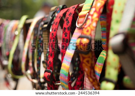 Dog collars for sale in pet store - stock photo