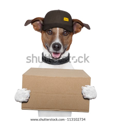 dog delivery post box - stock photo