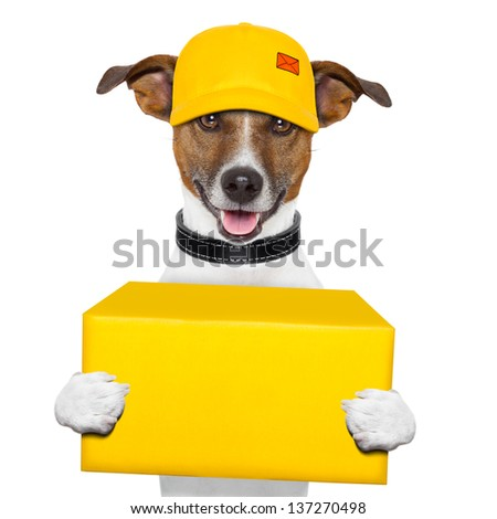 dog delivery yellow post box with cap - stock photo