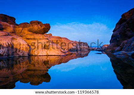 dog head stone with water reflection - stock photo