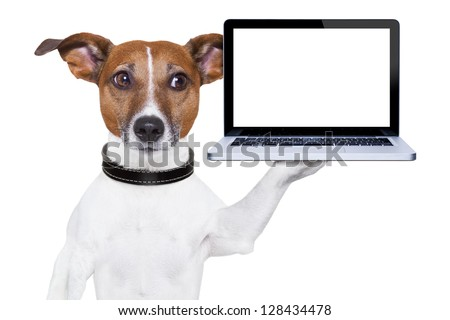 dog holding a  blank portable pc on paw - stock photo