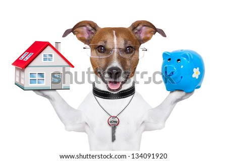 dog holding a small house and piggy bank - stock photo