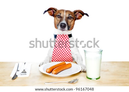 dog holding a white banner - stock photo