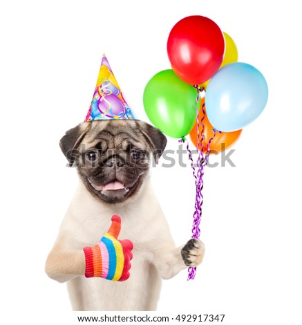 Dog holding balloons and showing thumbs up. isolated on white background