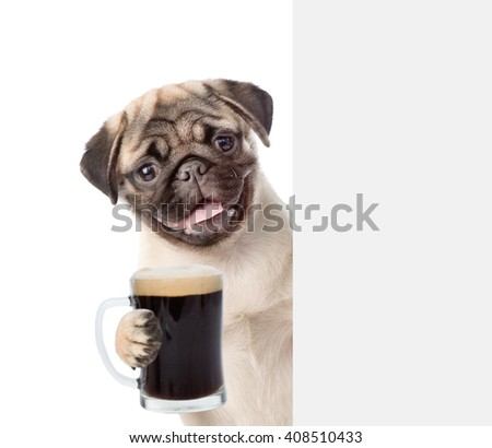 Dog holding beer peeking from behind empty board. isolated on white background