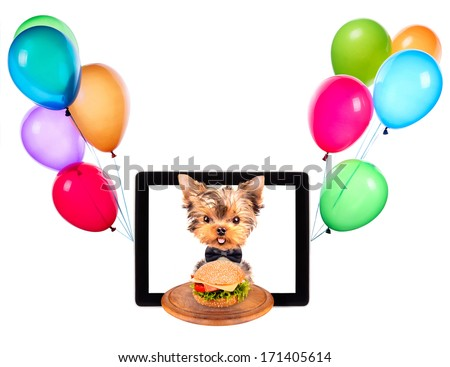 dog holding service tray with food and balloons on a digital tablet screen - stock photo