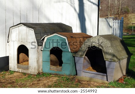 Dog Houses in Eastern Kentucky