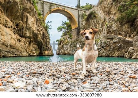 Dog It is standing on the beach between the rocks in the gorge. Beautiful bridge on the top. fiordo di furore Amalfi Coast (Costiera Amalfitana) Italy - stock photo