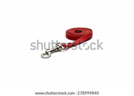 dog leash isolated on white background - stock photo