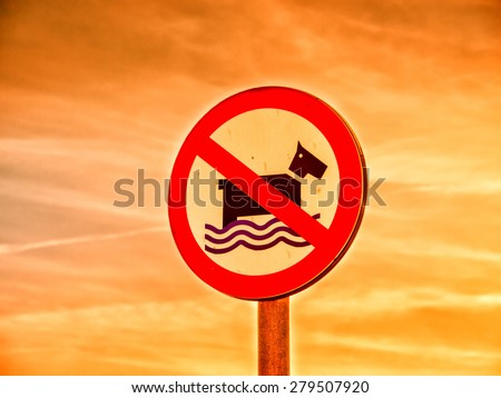 dog not allowed sign, swimming for dogs not allowed - stock photo