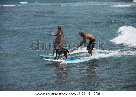 Dog on a surfboard with a Surfer and his girlfriend - stock photo