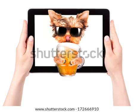 dog on tablet computer with glass of beer - stock photo