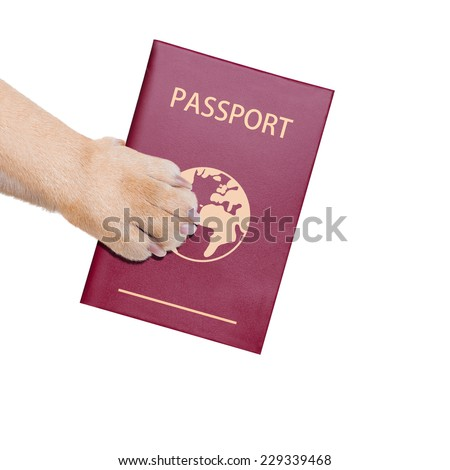 dog or pet holding its passport with paw , isolated on white background