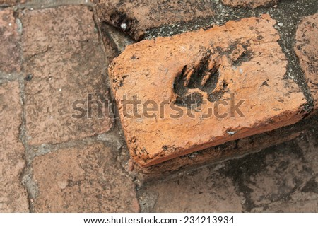 dog paw permanent in brown brick