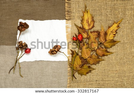 Dog Rose, holly and paper on the background of burlap
