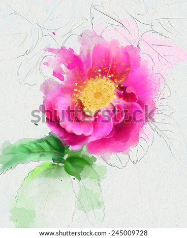 Dog rose isolated on white - stock photo