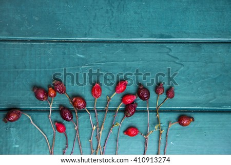 Dog roses and essential oil, bunch of dog rose,Different types Rosa canina hips and hawthorn, dry goji berries. chinese herbal medicine selection in wooden. soft focus - stock photo