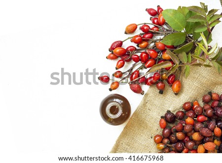 Dog roses and essential oil, bunch of dog rose,Different types Rosa canina hips and hawthorn, dry goji berries briar powder in wooden spoon. chinese herbal medicine selection in wooden - stock photo