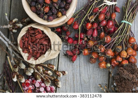 Dog roses and essential oil, bunch of dog rose, Herbal tea, Different types Rosa canina hips and hawthorn, dry goji berries, briar powder in wooden spoon. chinese herbal medicine selection in wooden - stock photo
