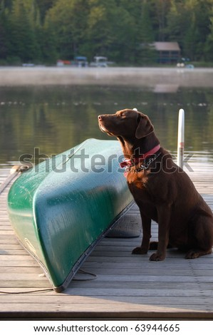 Dog sits by canoe waiting to be taken for a paddle/Time to Paddle/Patience is a Virtue - stock photo