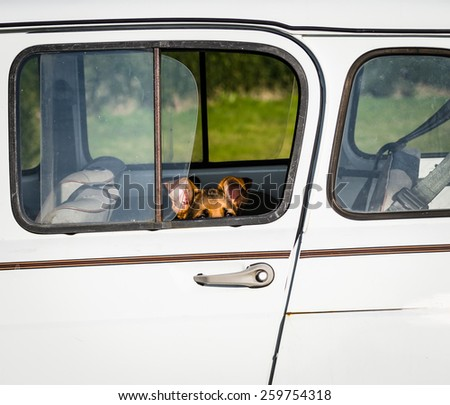 dog sitting in a car waiting ( german shepherd )  - stock photo