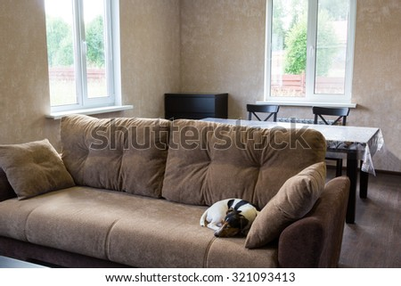 dog sleeps on the couch in the living room of a country house