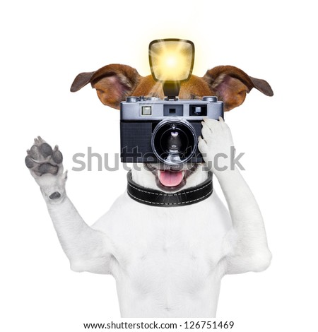 dog taking a photo with an old camera and flashgun