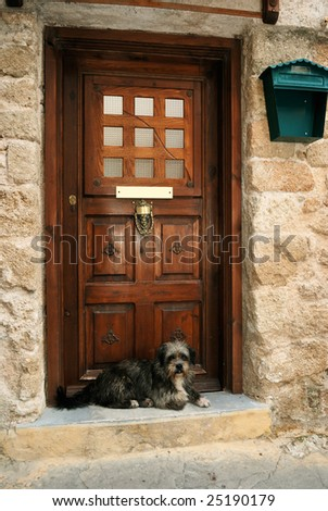 Dog waiting the master on the house' threshold - stock photo