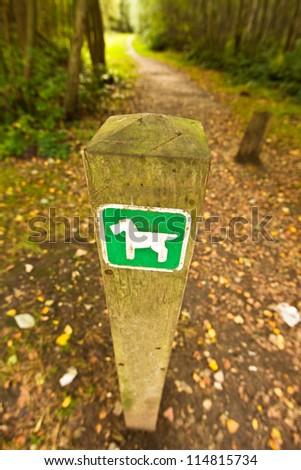 Dog walking trail - stock photo