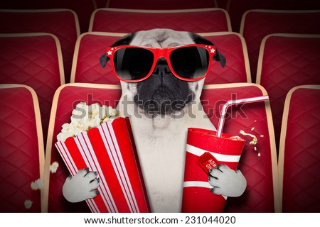 dog watching a movie in a cinema theater, with soda and popcorn wearing glasses - stock photo