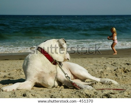 Dog Watching Girl at Beach - stock photo