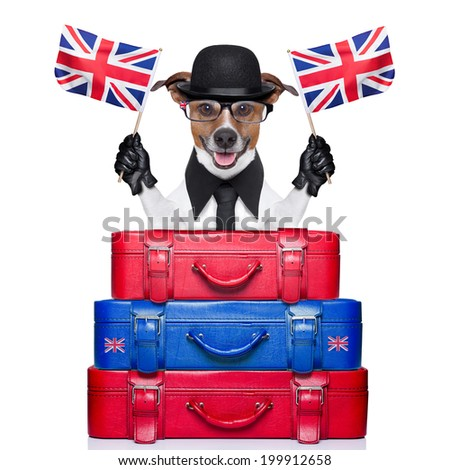 dog waving flags of united kingdom with luggage - stock photo