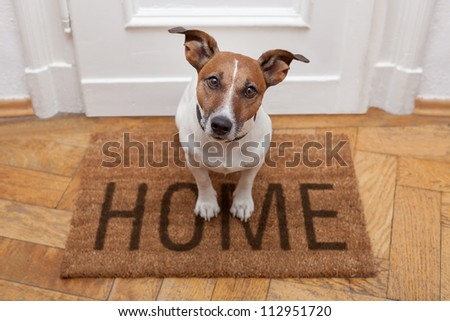 dog welcome home on brown mat - stock photo