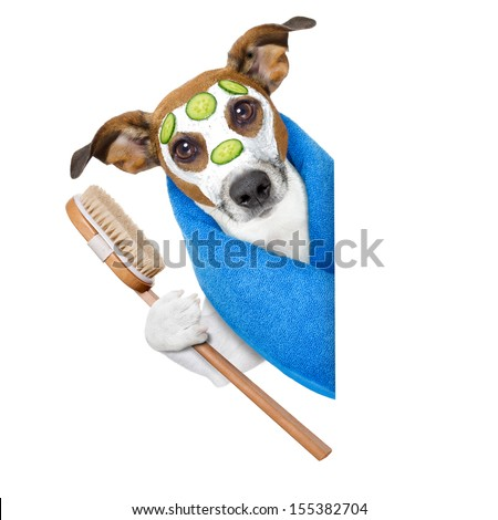 dog with a beauty mask beside a blank banner